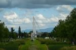 photo-1010805